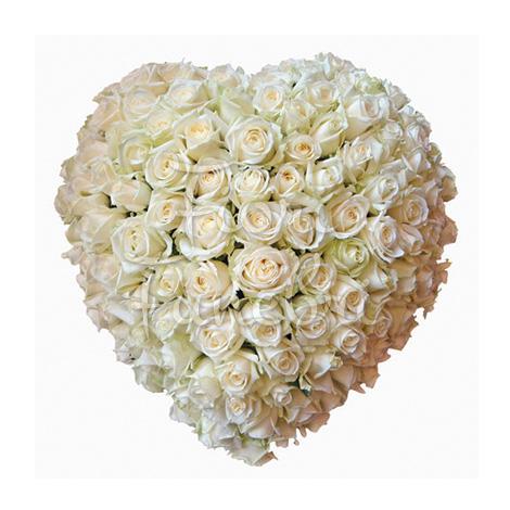cuore-di-100-rose-bianche