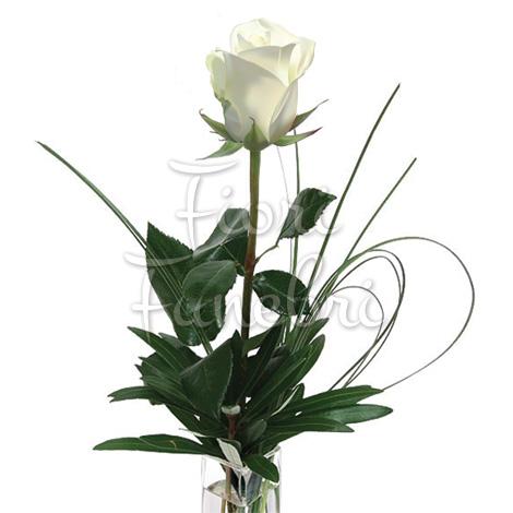 rose-bianche-numero-preciso