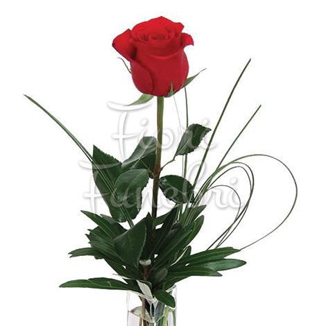 rose-rosse-numero-preciso